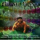 Ambient Amazon