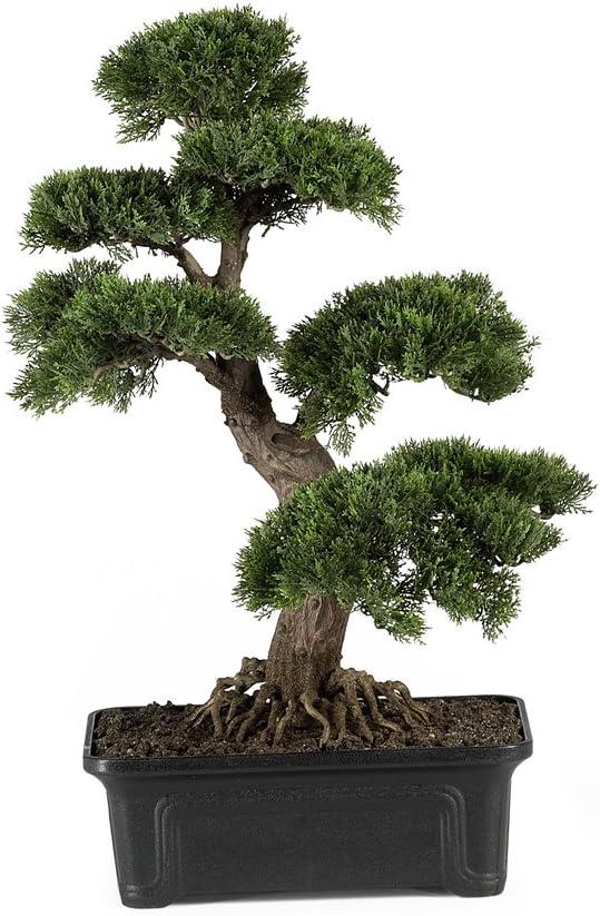 Amazon Com Nearly Natural 4103 24in Cedar Bonsai Silk Plant Green Home Kitchen