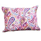 Rod's Pastel Pink Color sham with Colorful Pony Paisley All Around. Blooming Spring Soft Colorful Print.