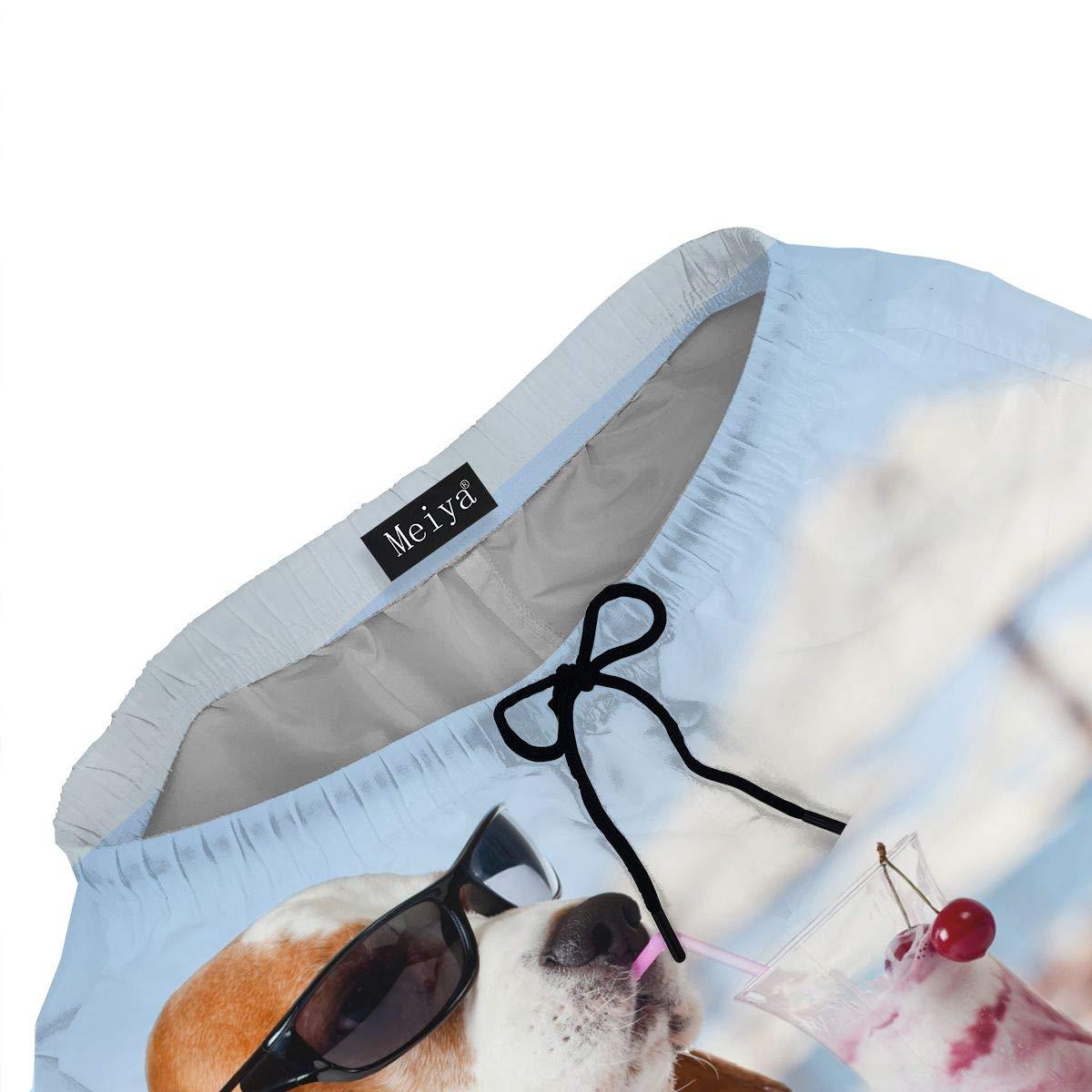 Beagle - Gafas de Sol Divertidas para Verano para Hombre ...