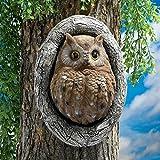 Cheap Design Toscano Knothole Owl Tree Sculpture