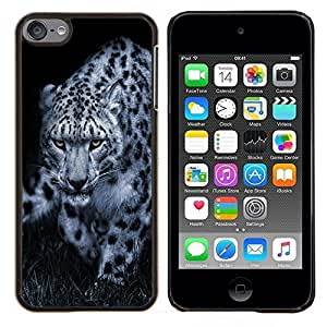 Cubierta protectora del caso de Shell Plástico || Apple iPod Touch 6 6th Touch6 || Leopardo Negro Blanco de la naturaleza animal Sugerencia @XPTECH