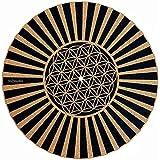 Amazon.com: Slipmat para tocadiscos/corcho Slipmat ...