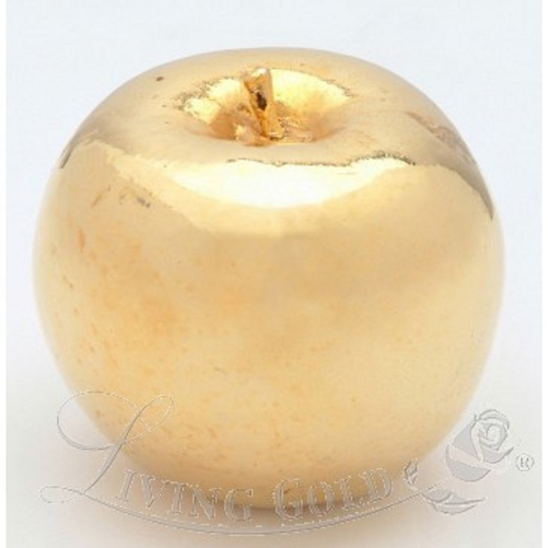Roxx Fine Jewelry 24K YELLOW GOLD PLATED APPLE includes clear display case