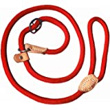 Adjustable Nylon Dog Pet Rope Products Slip Training Leash Lead Collar, 4-Feet (red)