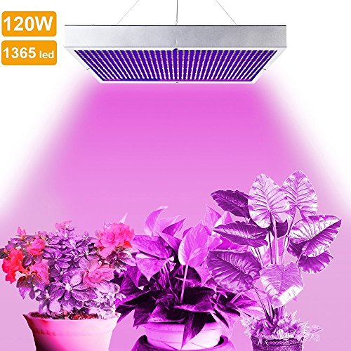 LVJING® 120W Led Grow Light Panel - Indoor Plant Light Bulb - 1365 Red + Blue SMD - High Power - for Hydroponic Greenhouse Aquatic Plants Flowers Vegetables Seed Starting Hydro Lighting