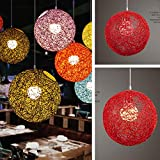 ETbotu 20cm Rattan Ball Lampshade Light Case Hanging Pendant (No Light Source) with E27 Suspension Wire & Round Sucking Disk