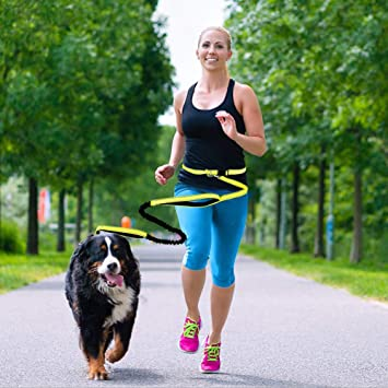 Livelynine Hands Free Leash for Dogs Large Medium Small 6.7ft Retractable Waist Running Leash with Reflective Stitches for Training Walking Jogging and Running Yellow
