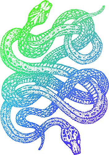 (Ombre Snakes Intertwined Hipster Beautiful Colorful Animal Cartoon Vinyl Sticker (8