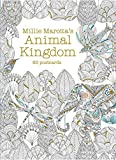 Millie Marotta's Animal Kingdom (Postcard Box): 50 Postcards (A Millie Marotta Adult Coloring Book)