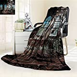 YOYI-HOME Warm Microfiber Duplex Printed Blanket with Bright Light from Tall Windows Ruins Hallway Station Shadow Image Brown Anti-Static,2 Ply Thick,Hypoallergenic/W59 x H79
