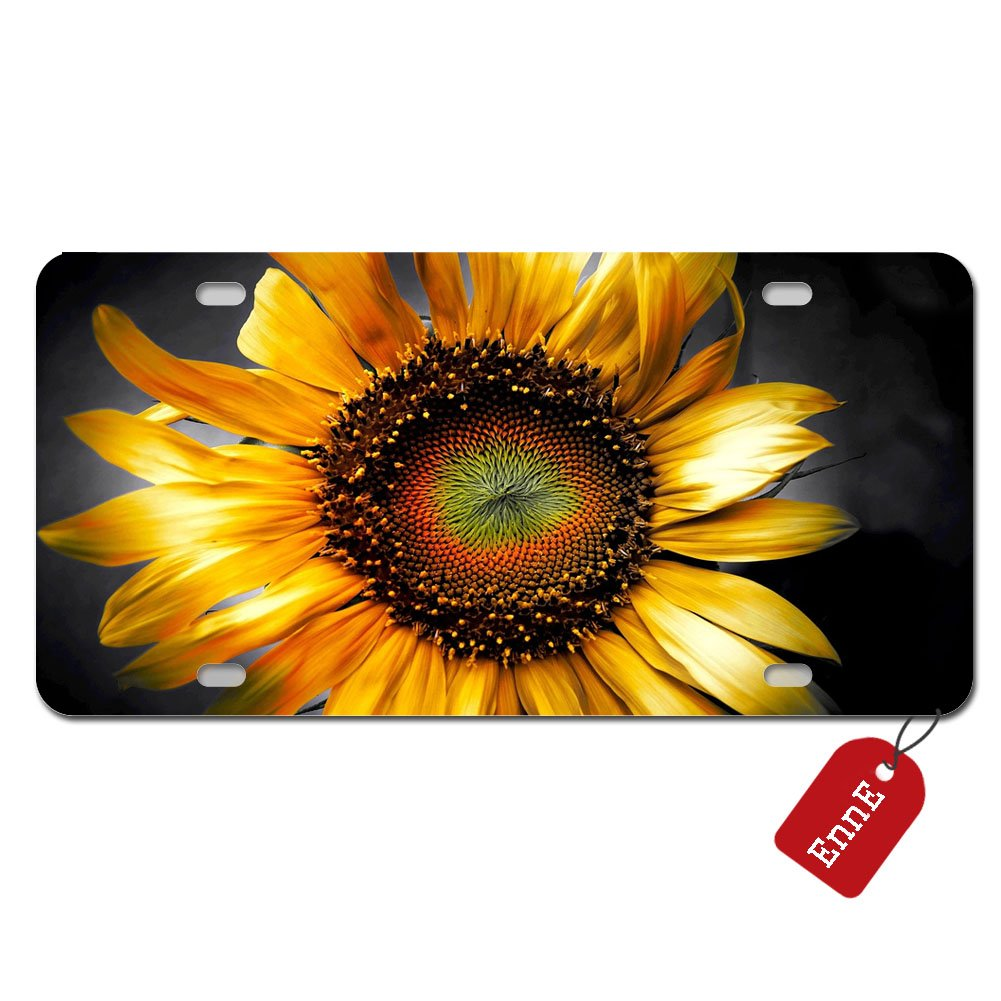 Beautiful Sunset Sunflower Scenery Novelty Car License Plate Cover Decorative Front Plate 6.1 X 11.8