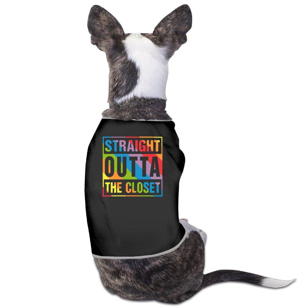 Straight Outta el armario perro suéteres abrigos impreso alta calidad: Amazon.es: Productos para mascotas