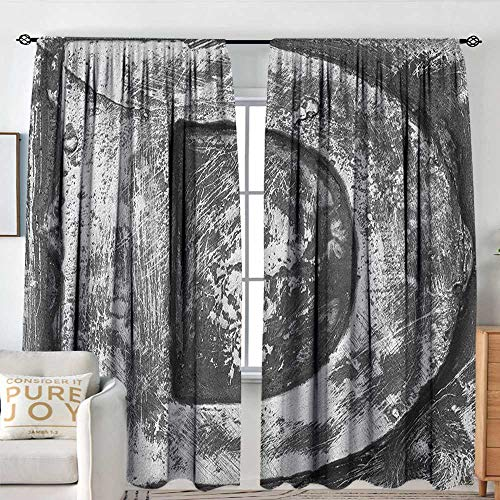 Petpany Blackout Curtains for Bedroom Letter D,Alphabet D Letter Reference to Someones Name Symbolic Character Education Art, Black Grey,Thermal Insulated Darkening Panels for Cafe Windows 100