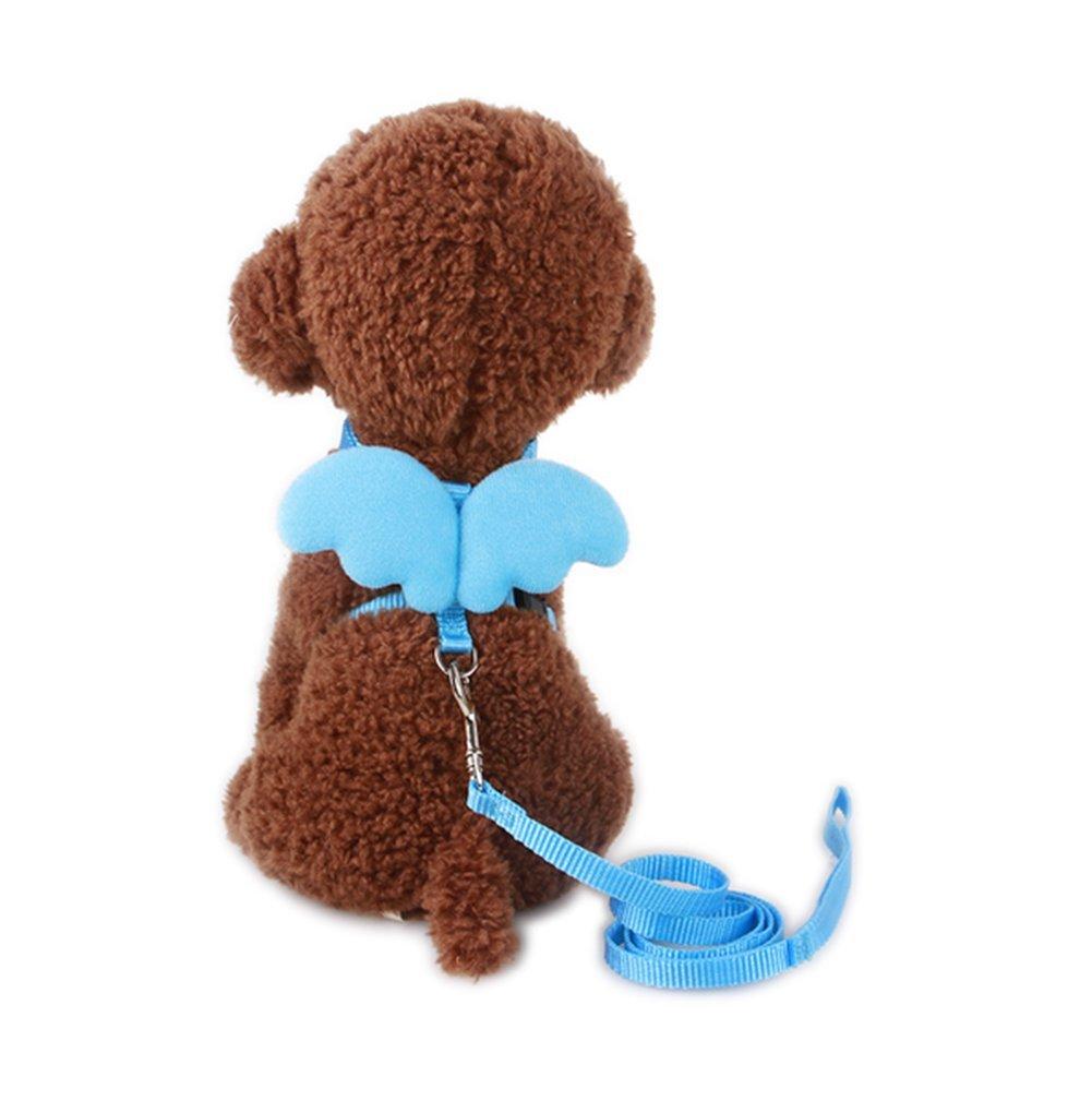 Da.Wa Arn/és Forma de ala y Cuerda de Perro Correa del Animal para los Mascota Perros
