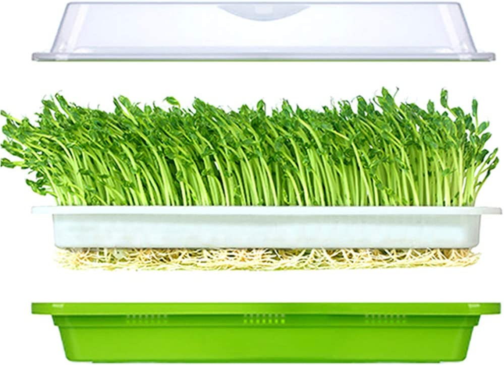 Seed Sprouter Tray BPA Free PP Healthy Alfalfa Wheatgrass seeds Grower With Cover,2 Size Small Holes Grid