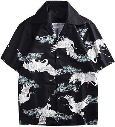 Camisa Hawaiana para Hombre, Manga Corta, de con 3 Estilos para Verano Funky Camisa Hawaiana Señores Playa (Negro, XL): Amazon.es: Ropa y accesorios