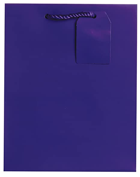 Royal Blue Matte Jillson Roberts 6-Count Medium 8 x 10 x 4 All-Occasion Gift Bags Available in 20 Solid Colors