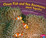 Clown Fish and Sea Anemones Work Together (Animals Working Together)