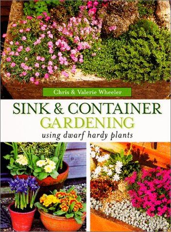 Sink & Container Gardening: Using Dwarf Hardy Plants