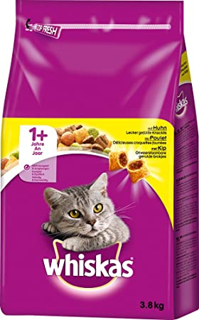 Whiskas - Comida Seca para Gato (3,8 kg): Amazon.es: Productos para mascotas