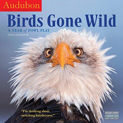 Audubon Birds Gone Wild Wall Calendar 2018