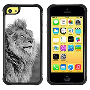 Jordan Colourful Shop@ King Lion Black White Mane Powerful Rugged hybrid Protection Impact Case Cover For iphone 5C CASE Cover ,iphone 5C case,iphone5C cover ,Cases for iphone 5C