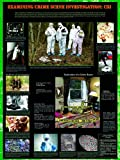 American Educational Examining Crime Scene Investigation Forensics Poster, 38'' Length x 27'' Width