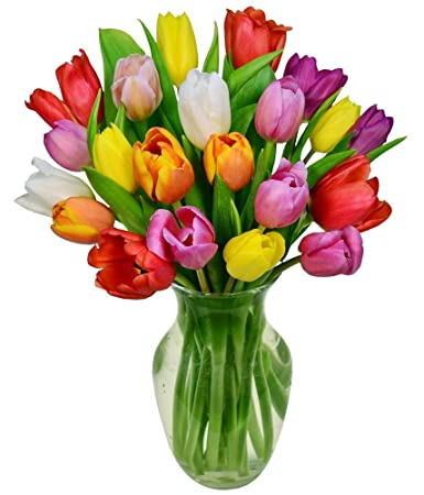 Flowers   Rainbow Tulip Bouquet   20 Stems (Free Vase Included)