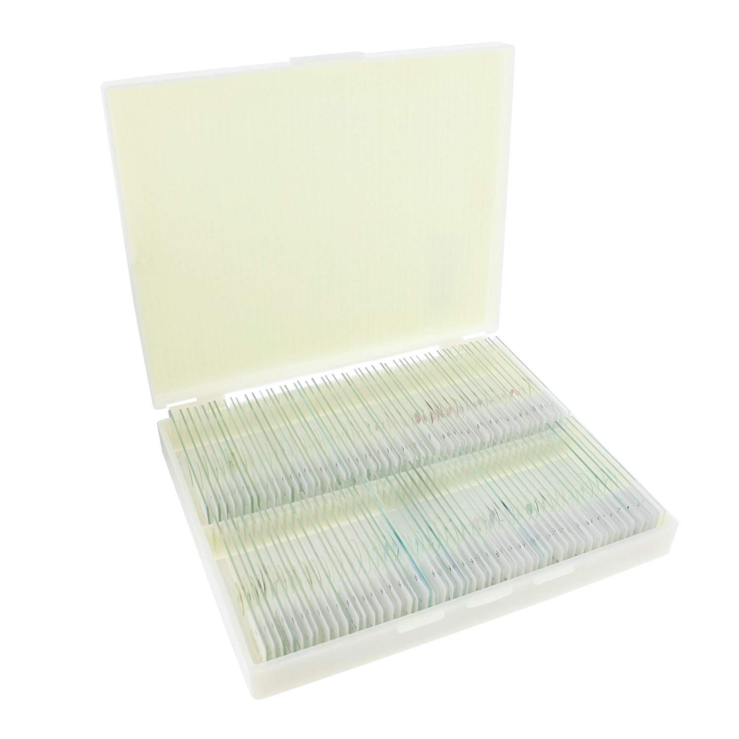 MonMed Prepared Microscope Slides 100 Pc Plant and Animal Microscope Sample Kit with Wooden Microscope Slide Box
