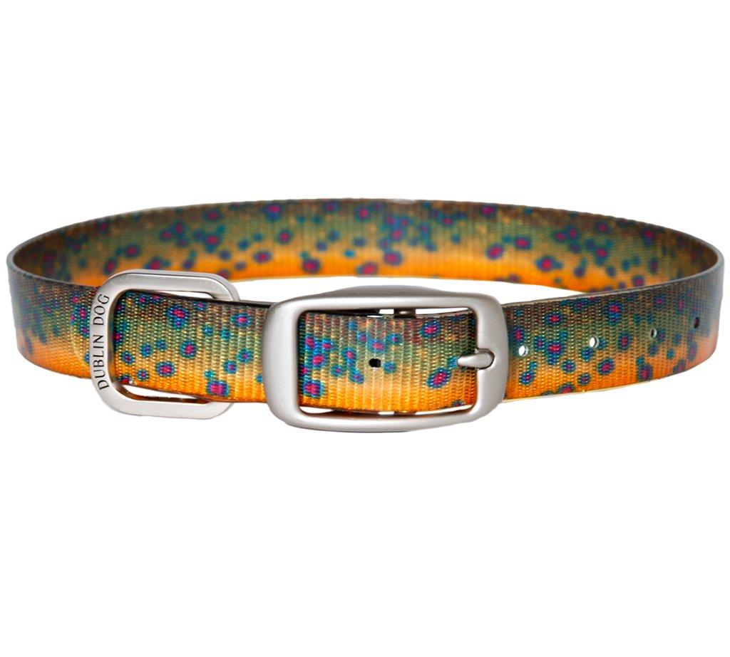 Dublin Dog KOA Fish Rainbow Trout Dog Collar