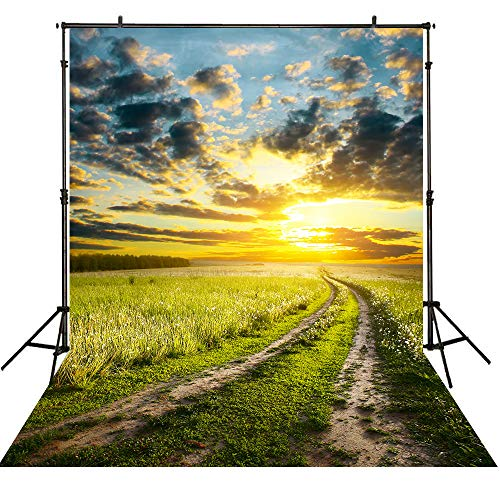 Allenjoy 5x7ft Nature Autumn Rural Farm Field Backdrop Green Grass Path Road Photography Blue Sky White Cloudy Sunset Background Outdoor Party Photo Studio Props -