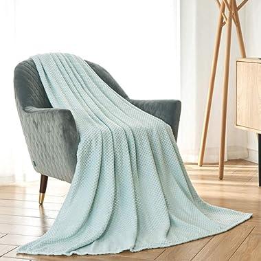 CAI TENG Flannel Fleece Blanket Super Soft Warm Cozy Bed Blanket Plush Lightweight Sofa Throw Blanket (Duck Egg, 50 x 60 Inches)