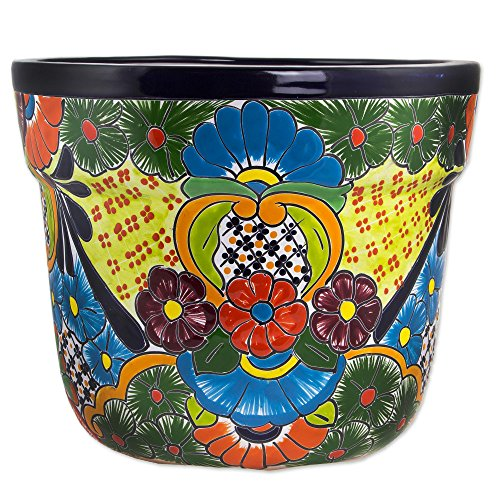 Talavera Ceramic Pot (NOVICA Floral Ceramic Flower Pot, Multicolor, 'Talavera Beauty')