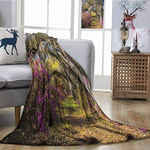 - Homrkey Lightweight Blanket Americana Landscape Decor Flowers in Charleston South Carolina Azalea Blooms Oak Tree Blanket for Sofa Couch Bed W70 xL93 Violet Purple