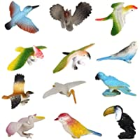 TENDERFEET Beautiful Plastic Bird Figure Toy Play Set for Kids - Pack of 12