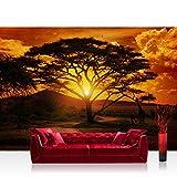 Photo wallpaper - sunrise africa safari giraffe - 157.4''W by 110.2''H (400x280cm) - Non-woven PREMIUM PLUS - AFRICAN SUNSET - Wall Decor Photo Wall Mural Door Wall Paper Posters & Prints