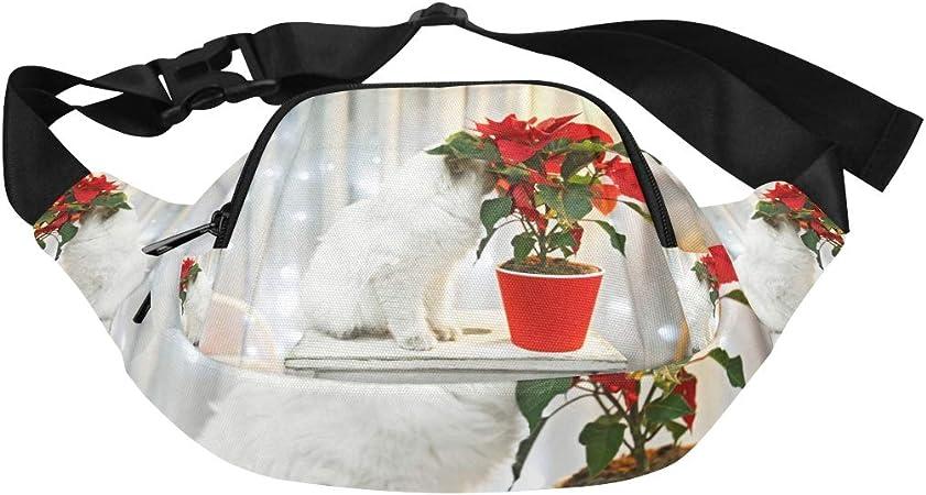 The Red Rose Broke The Pot Cat Fenny Packs Waist Bags Adjustable Belt Waterproof Nylon Travel Running Sport Vacation Party For Men Women Boys Girls Kids