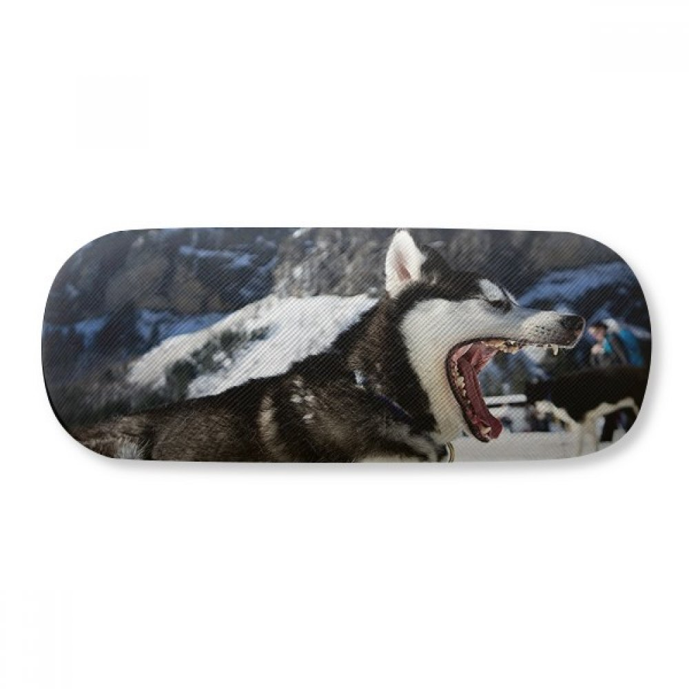 Big Mouth Dog Snow Husky Picture Glasses Case Eyeglasses Clam Shell Holder Storage Box