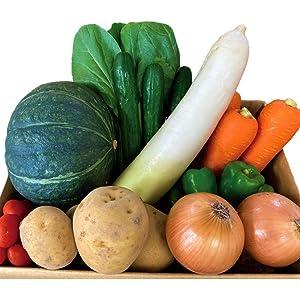 北海道産 野菜セット 詰め合わせ 人気 【 北海道直送 】 野菜 人気 旬 7~10種類 クール便 北海道 じゃがいも たまねぎ