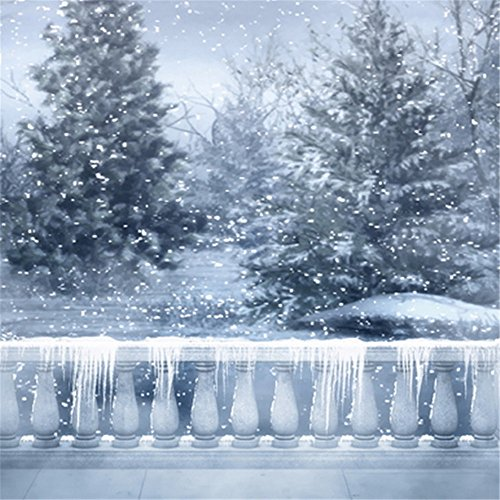 Snowflake Pillar (10x10ft Gloomy Sky Icy Stone Pillars Falling Snowflakes Winter Photography Backdrops Backgrounds for Photo Studio)