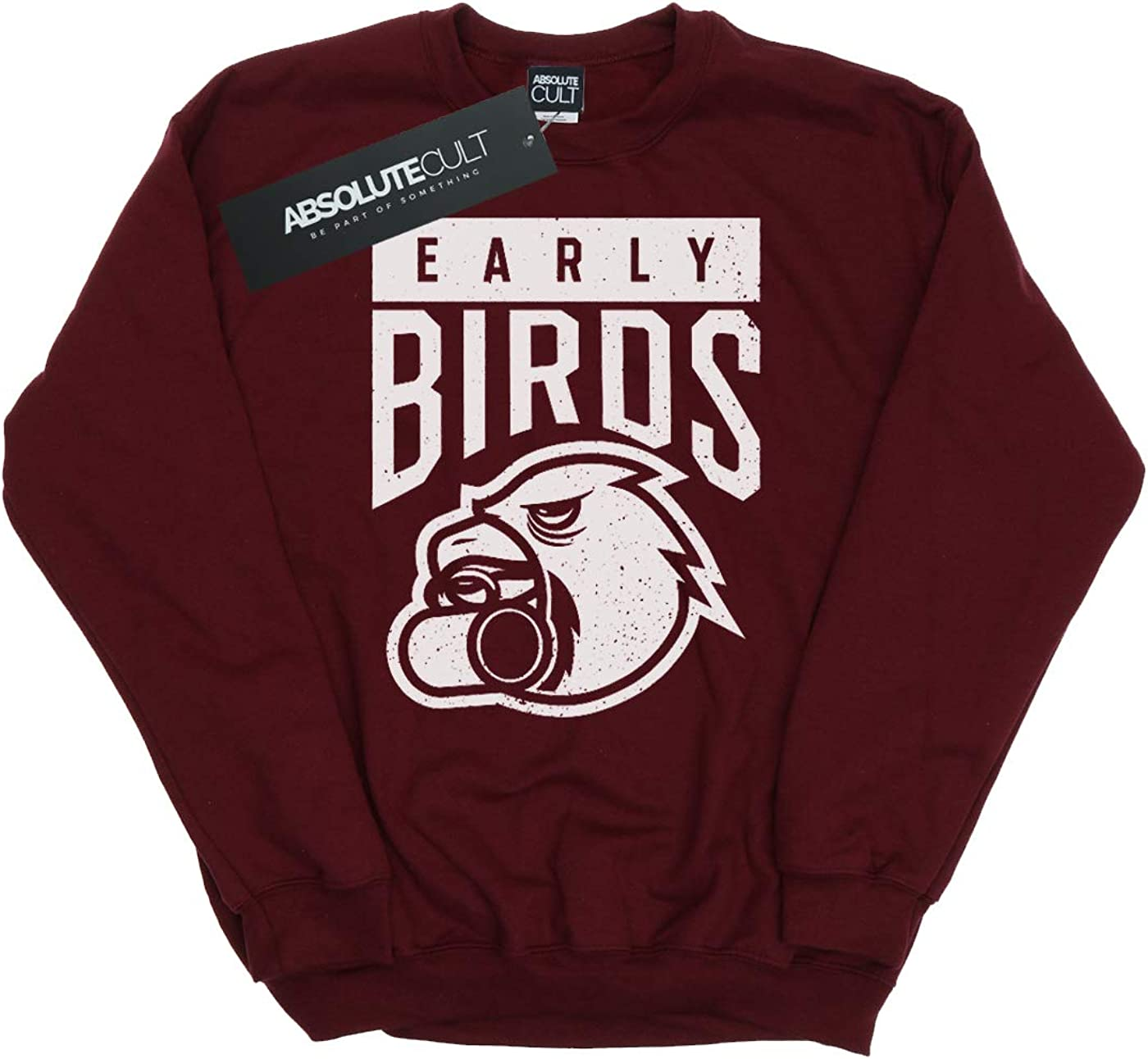 Ntesign Girls Early Birds Sweatshirt
