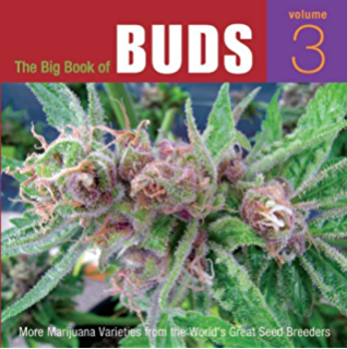 The cannabible 2 2 jason king amazon the big book of buds more marijuana varieties from the worlds great seed breeders fandeluxe Images