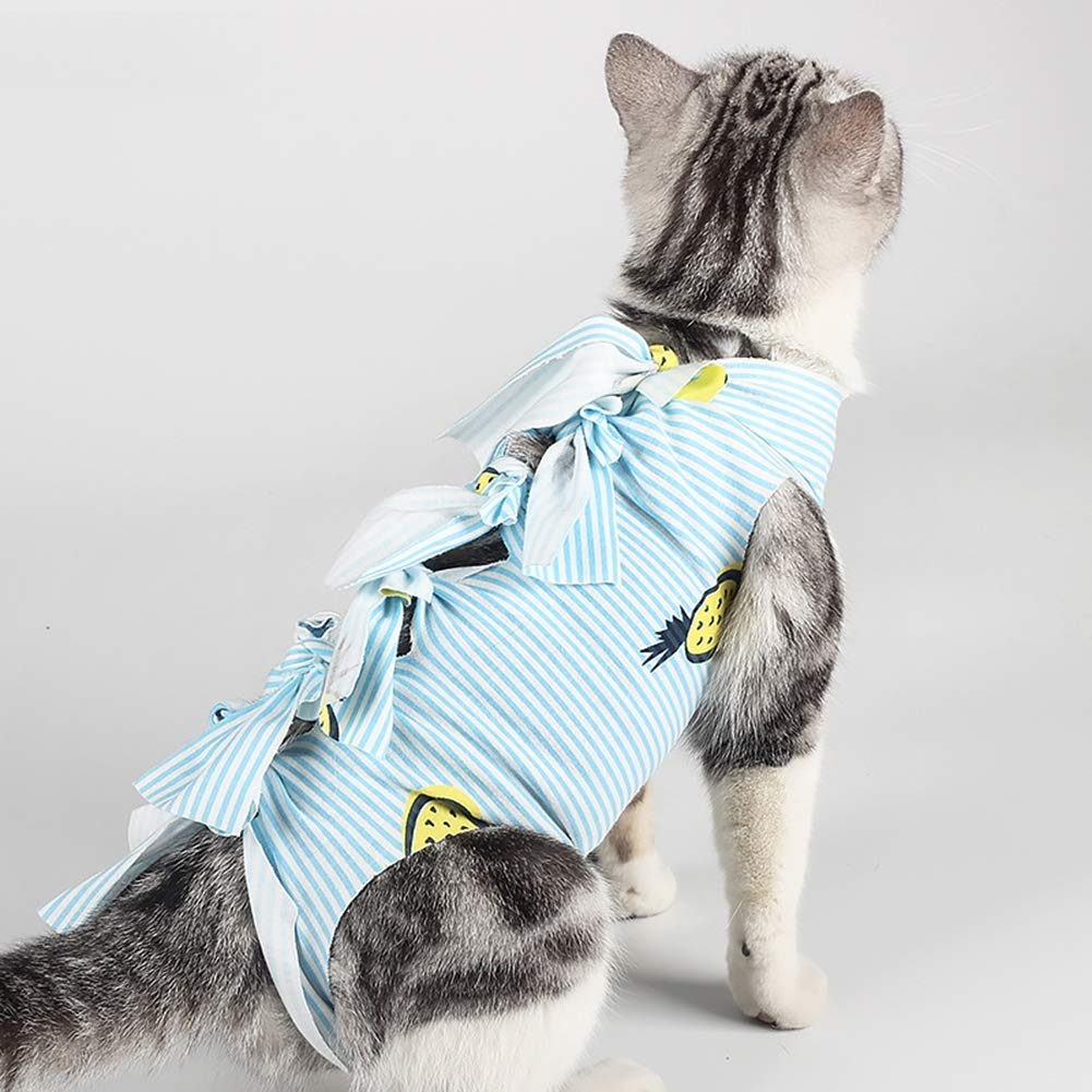 Ice con Pet Recovery Suit, Professional Pet Recovery Suit Protective Pet Coat After Surgery E-Collar Alternative Prevent Cat Lick Wound for Cats for Abdominal Wounds Skin Diseases Surgery,C,M by Ice con