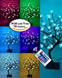 Lightshare 18Inch Cherry Blossom Bonsai Tree, 48 LED Lights, RGB with Remote Control, 16 Color-changing Modes, Ideal As Night Lights