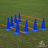 Lord Anson Dog Agility Hurdle Cone Set - Canine