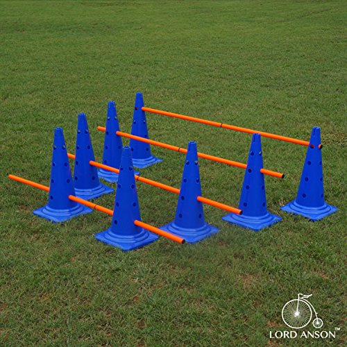 Buy dog agility equipment indoor
