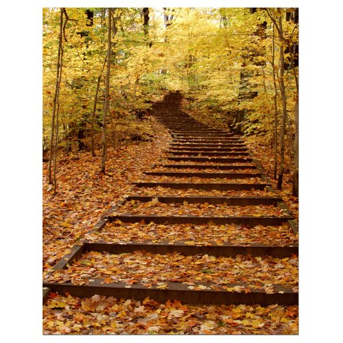 Trademark Fine Art Fall Stairway by Kurt Shaffer Canvas Wall Art, 24x36-Inch