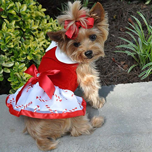 Christmas Holiday Dog Dress - Doggie Design Holiday Dog Harness Dress Skirt with Matching Leash (Candy Canes, S)