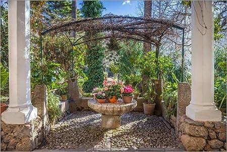 Póster 30 x 20 cm: In The Garden Son Marroig (Mallorca, Spain) de Christian Müringer - impresión artística, Nuevo póster artístico: Christian Müringer: Amazon.es: Hogar